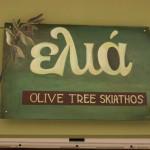 Olive Tree Skiathos